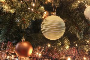 Favorites of november: Ornament