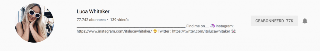 YouTubers I recently followed: Luca Withaker